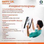 happycal-03